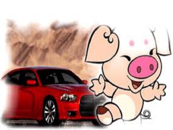 Tuổi Ất Hợi nên mua xe ngày nào để gặp may mắn?
